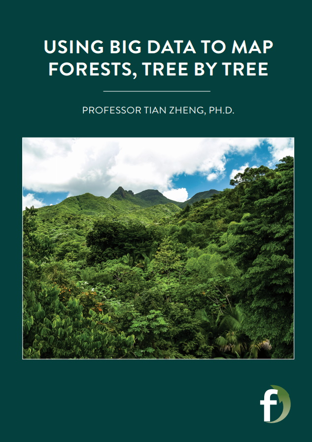Using Big Data to Map Forests, Tree by Tree by Professor Tian Zheng